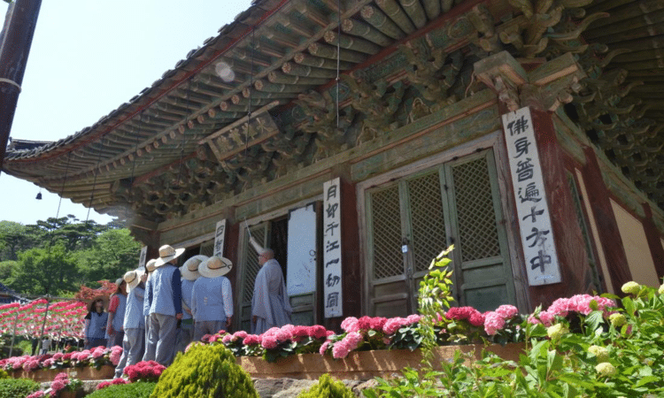 Jeondeungsa Temple Stay | Ganghwa-gun, Incheon