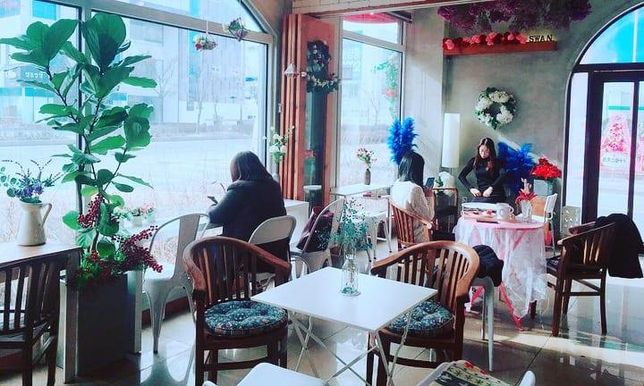 Swan Park Cafe | Wansan-gu, Jeonju