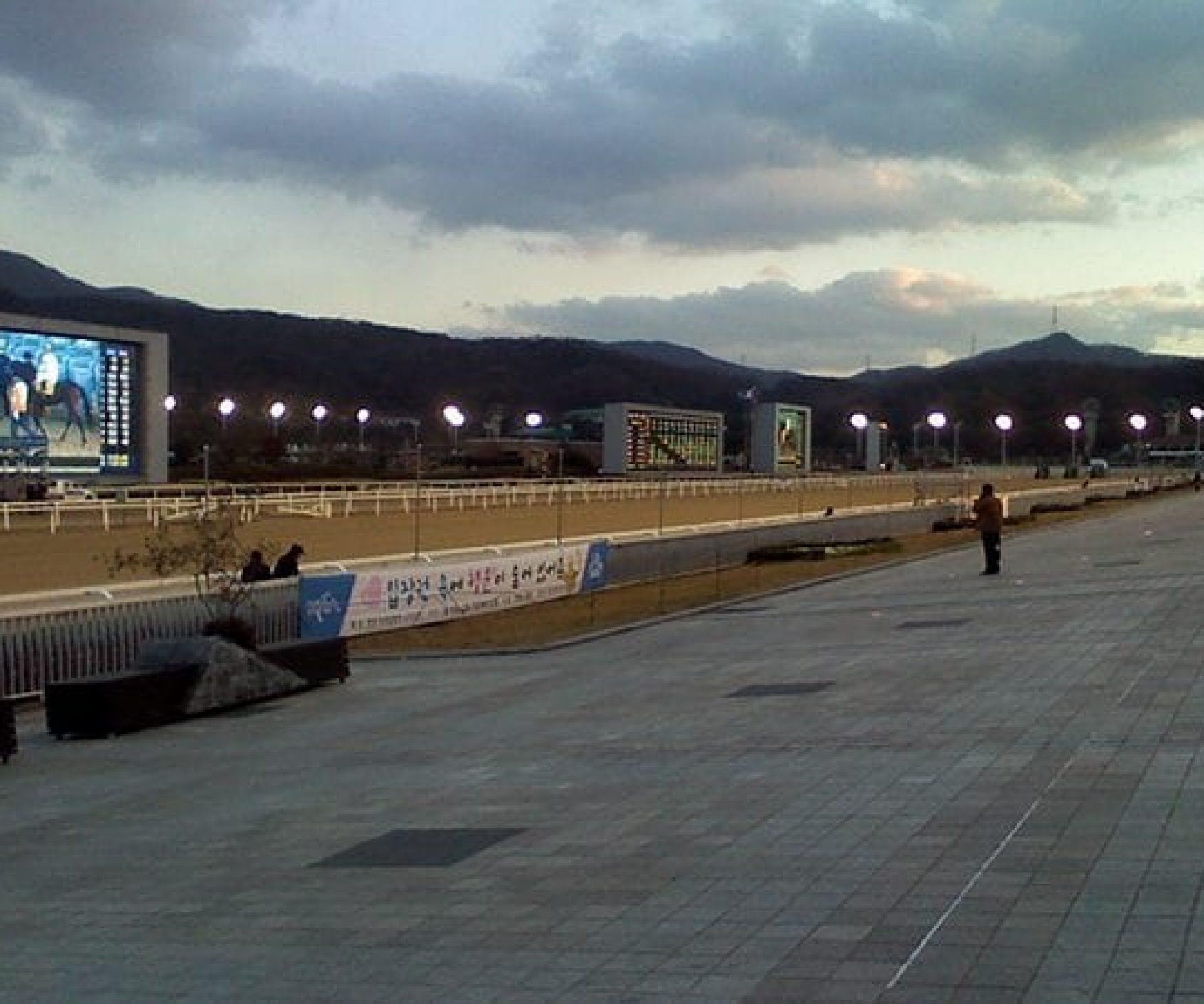LetsRun Park | South Korea