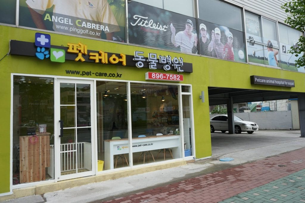 PetCare Animal Hospital | Busanjin-gu, Busan