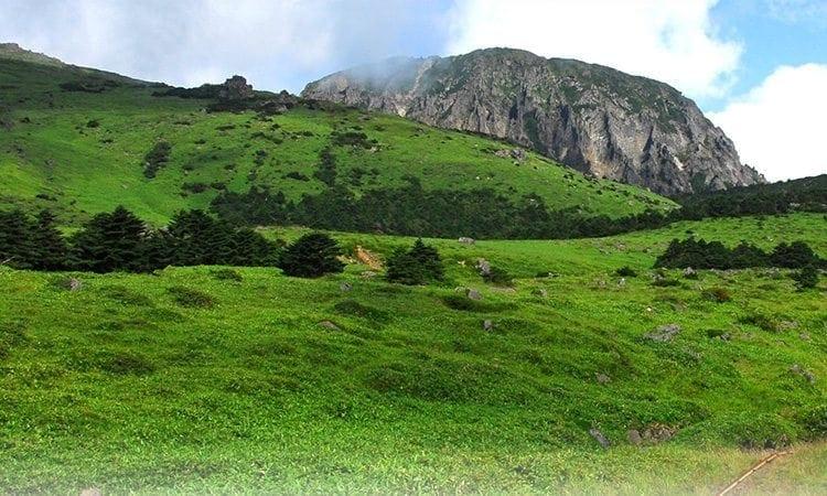Hallasan Mountain | Jeju-si, Jeju-do