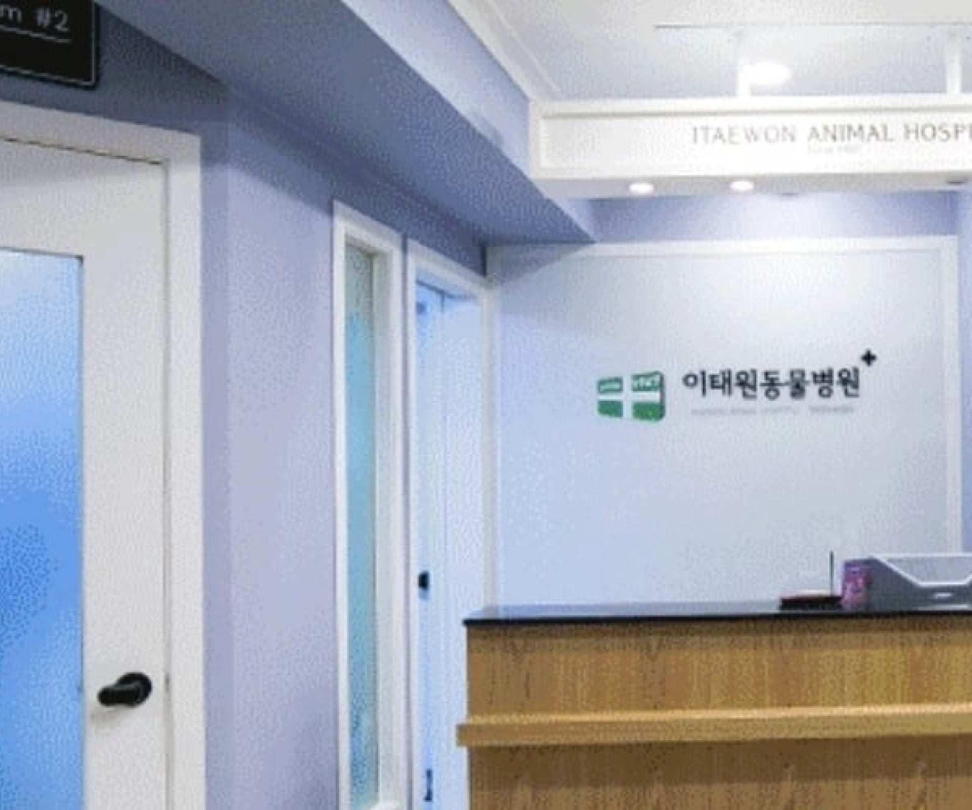 Itaewon Animal Hospital | Yongsan-gu, Seoul