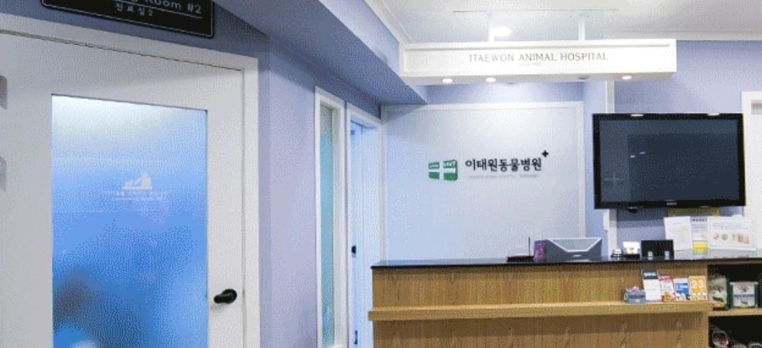 Itaewon Animal Hospital | Yongsan-gu, Seoul