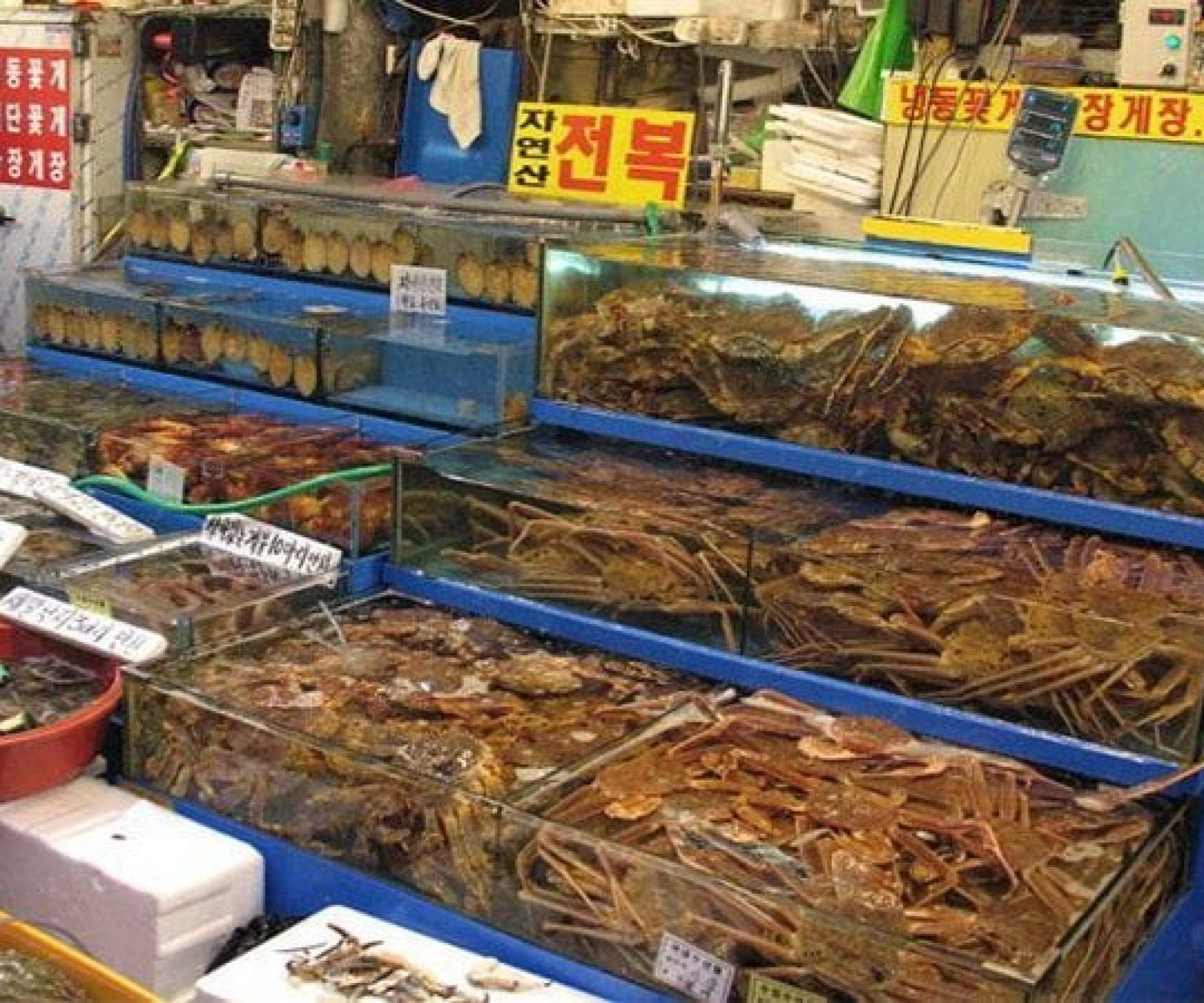 Noryangjin Fish Market | Dongjak-gu, Seoul