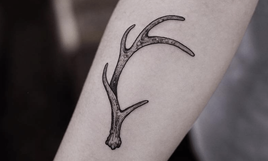 Reindeer Ink | Mapo-gu, Seoul
