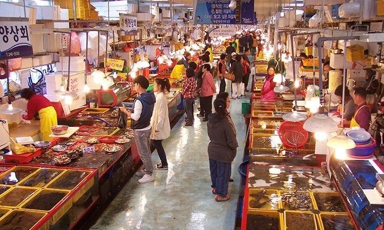 Jagalchi Fish Market   Jung-gu, Busan