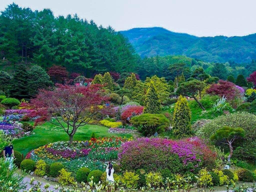 The Garden of Morning Calm   Gapyeong-gun, Gyeonggi-do