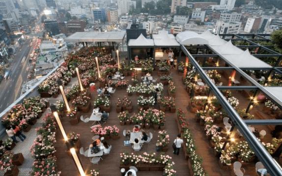 Sky Rose Garden (하늘 로즈 가든) | Jung-gu, Seoul