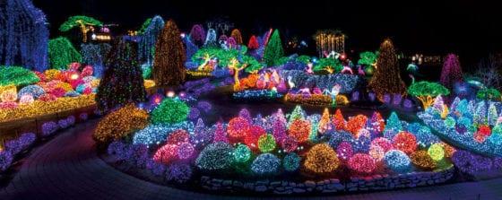 Lights Festival at The Garden of Morning Calm