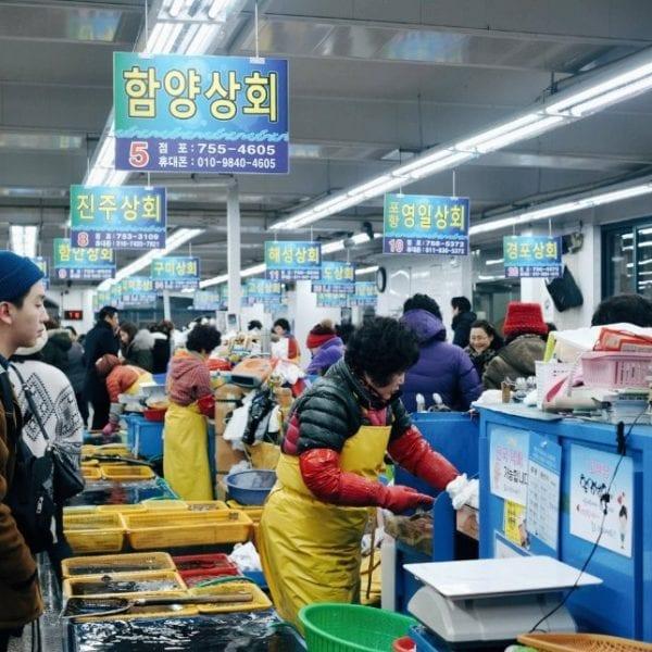 Millak-dong Raw Fish Town | Suyeong-gu, Busan