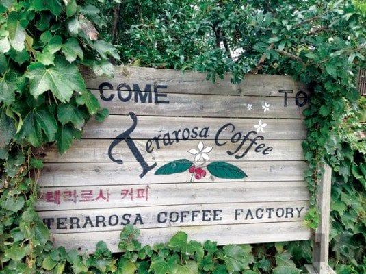 Terarosa Cafe 02