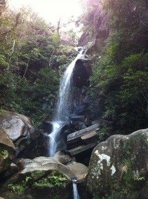 beautiful waterfall in northern okinawa-honto
