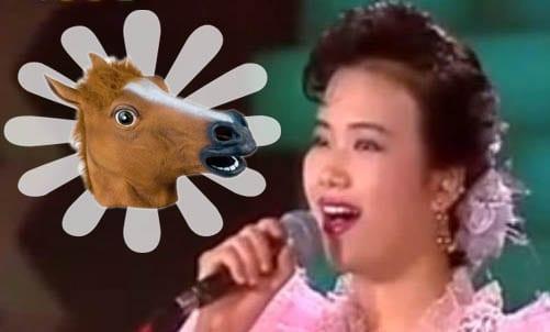 10 Of The Weirdest Korean Wikipedia Entries horse like lady