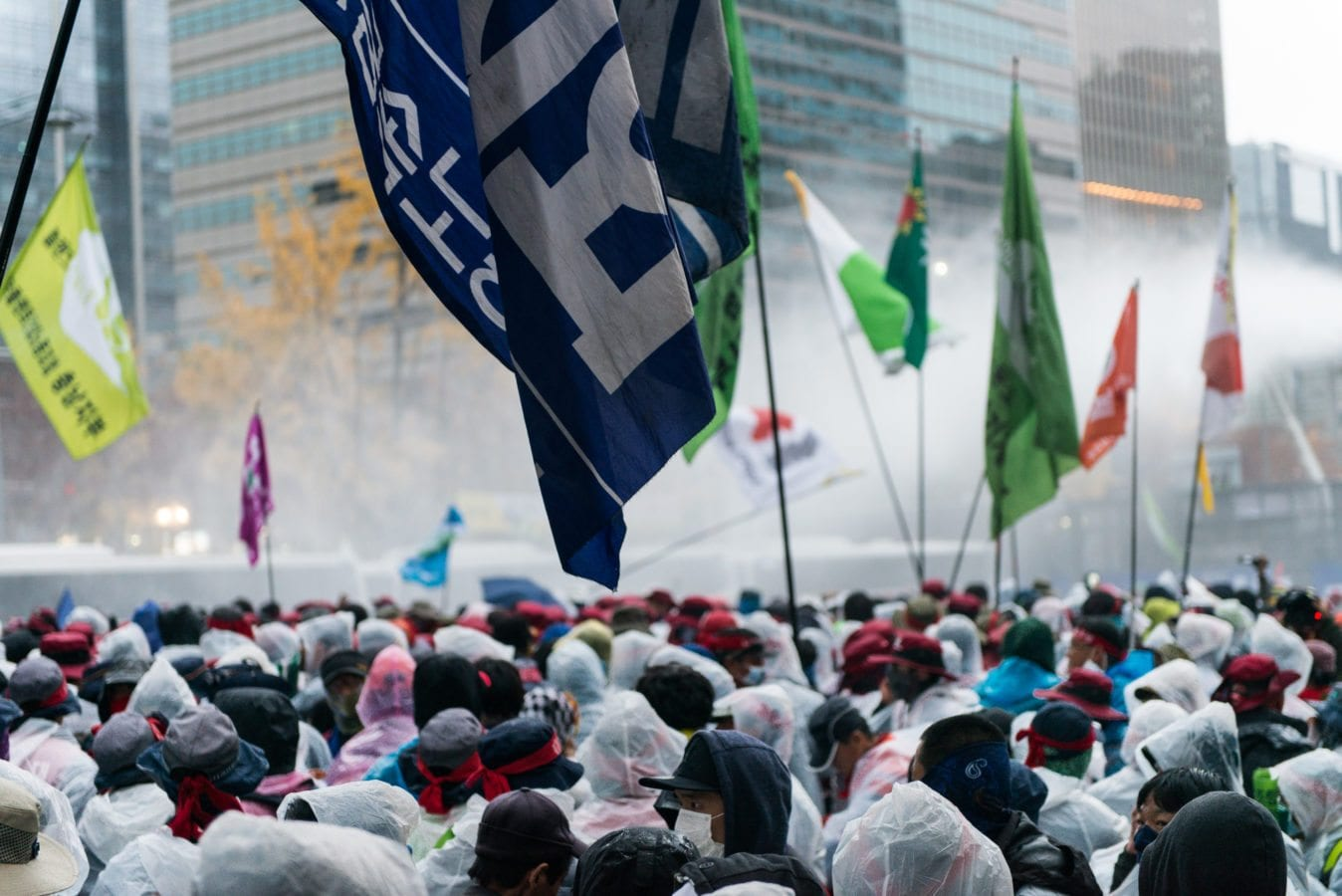 Seoul Protests 11/14 Flag