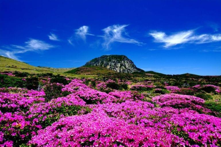 mountain korea hike hiking