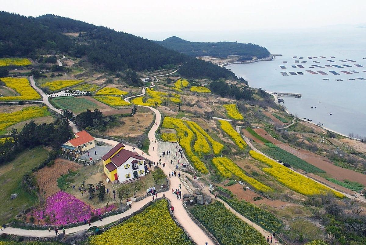 beaches in korea cheongsando