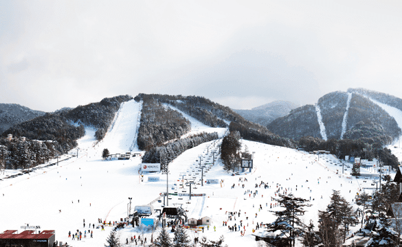 yongpyeong-ski-snowboard-winter