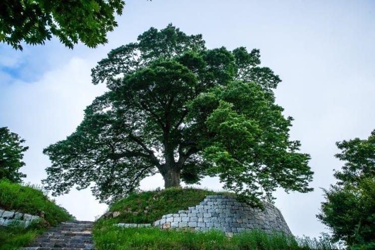 castle korea seongheung fortress