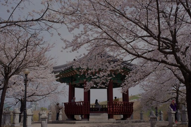 unique-ways-to-enjoy-korea-in-spring