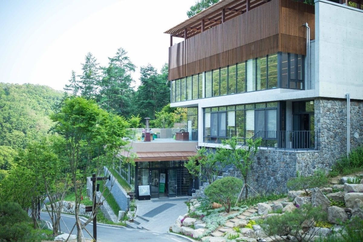 healience resort gangwondo
