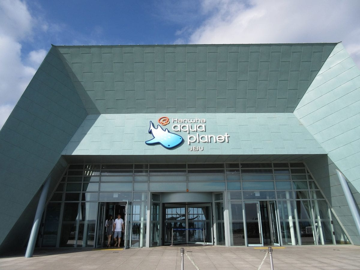 Aqua Planet Jeju - aquariums in korea