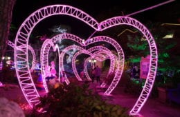 pocheon herb light festival heart valentine
