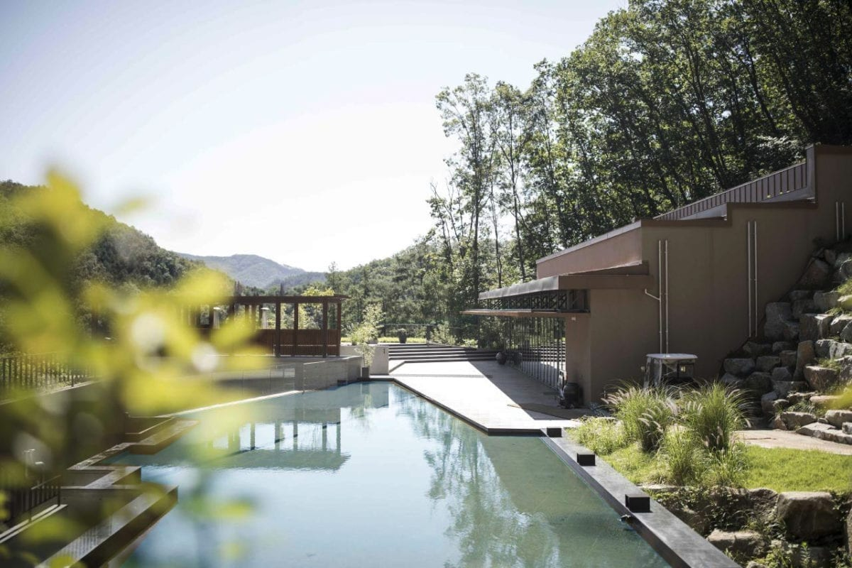 swimming pool healience