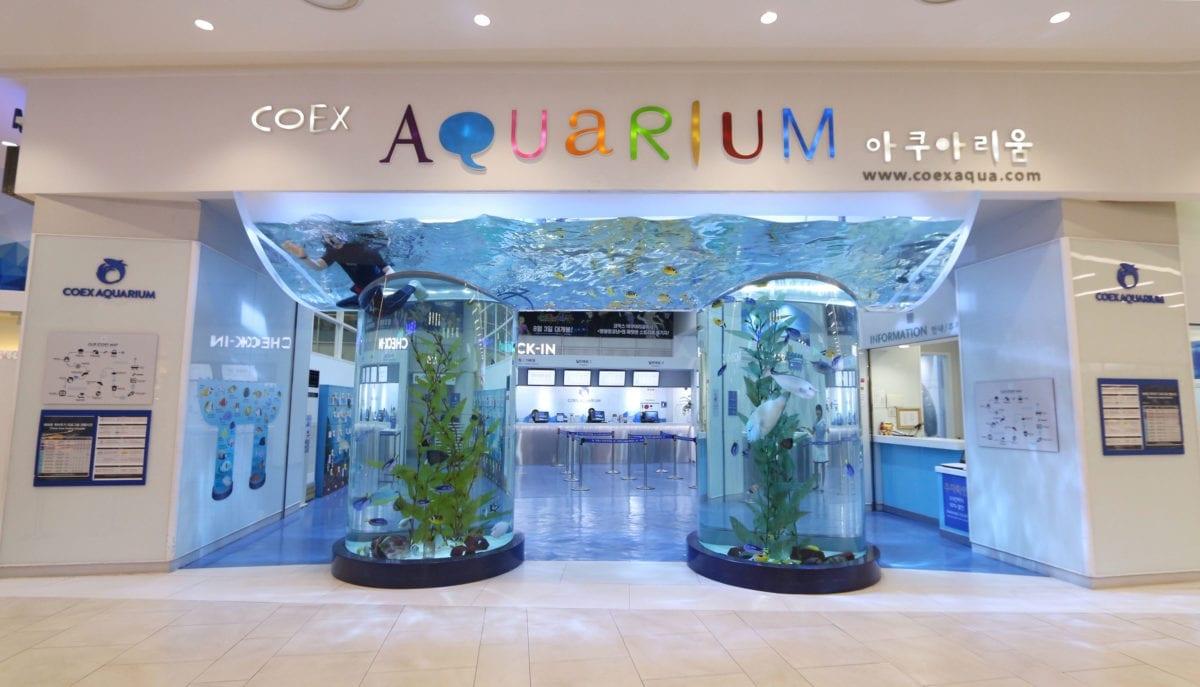 Coex Aquarium Culture Day discount