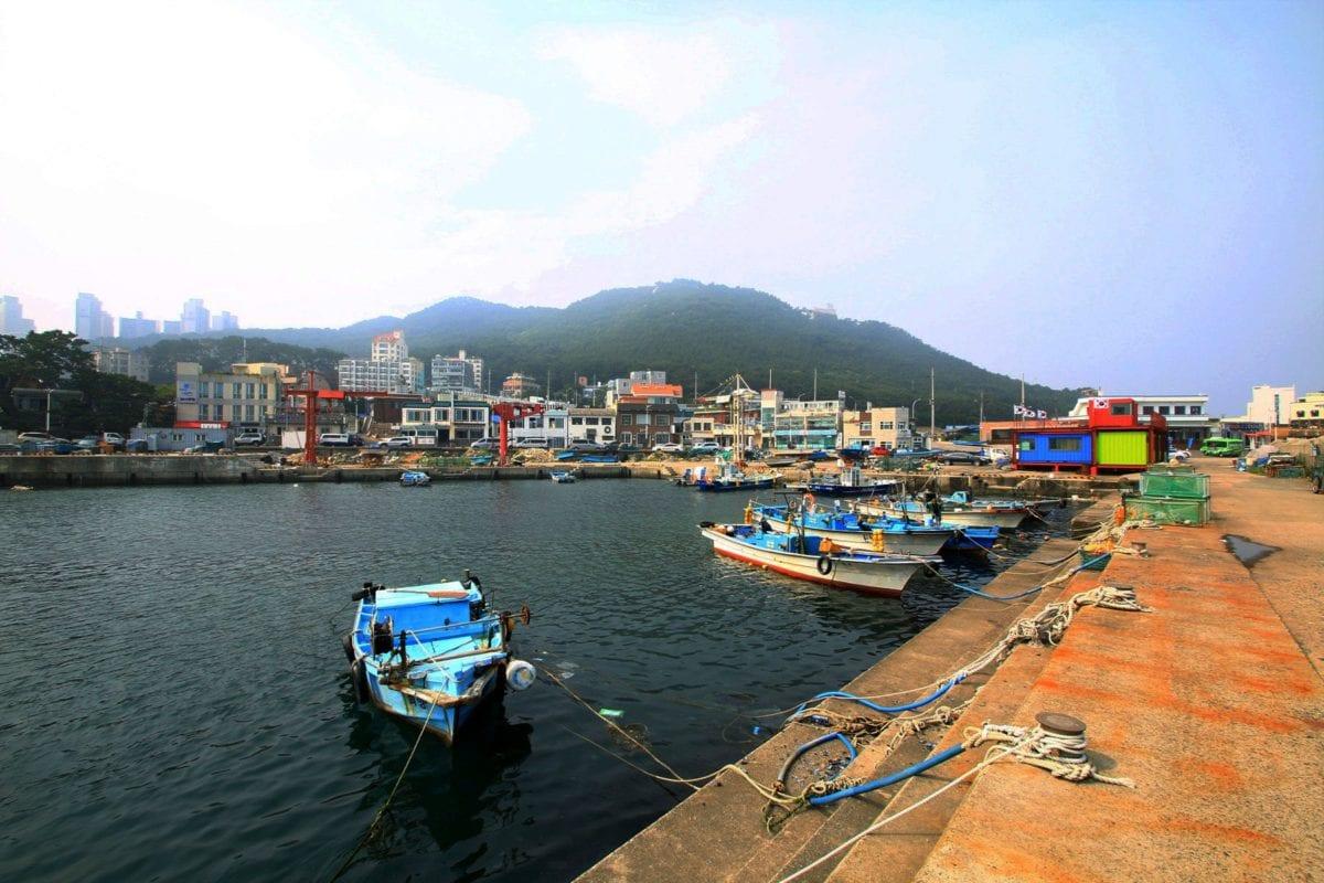 cheongsapo clam seafood town market busan korea