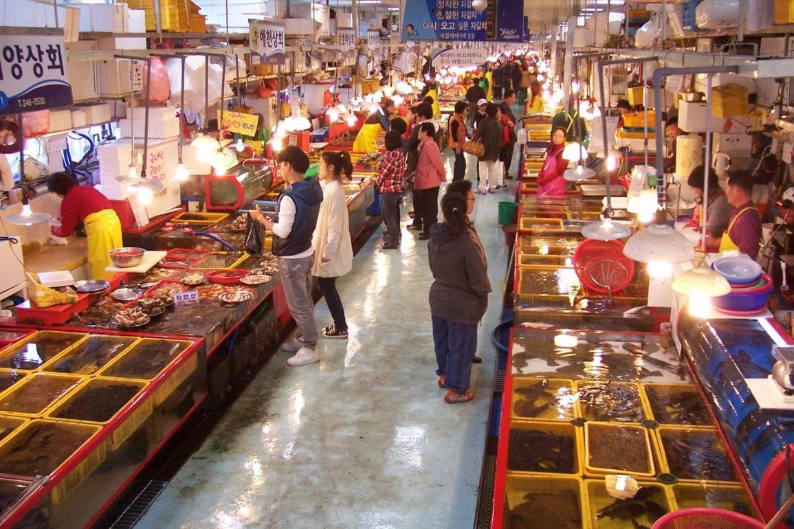 jagalchi market seafood busan