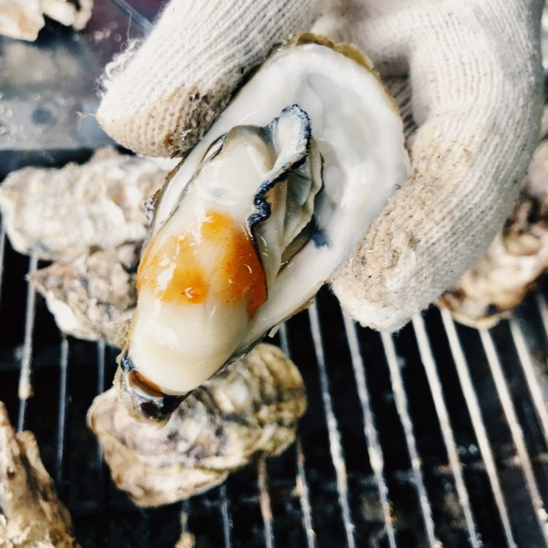 grilled oysters korea