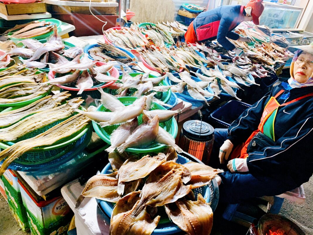 Fish market in Tongyeong Korea